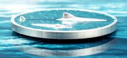 Espectacular nueva moneda de Palau con relieve 'de miedo'