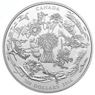 Canadá y sus grandes praderas
