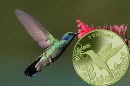 El colibrí de Islas Vírgenes Británicas, en titanio verde