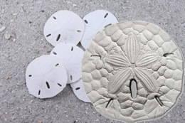 Monedas estelares para empezar el año en la República de Palaos