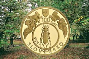 Patrimonio Mundial Natural: Bosques primarios de hayas de los Cárpatos en Eslovaquia
