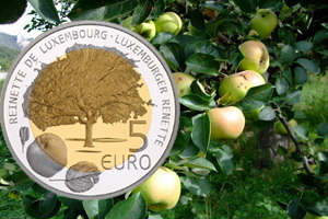 Las manzanas reinetas de Luxemburgo en 5 euros