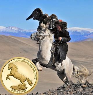 """Serie """"Naturaleza"""" de Mongolia: el caballo"""