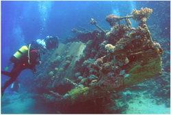Más de 10 toneladas de oro en un barco japonés hundido durante la II Guerra Mundial