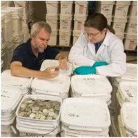 Odyssey deberá devolver a España las 594.000 monedas de oro y plata