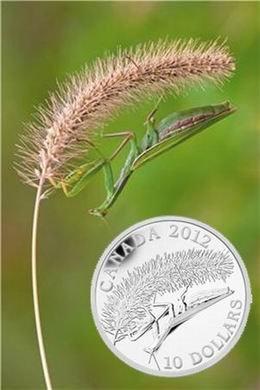 """Fotografía de una """"Mantis religiosa"""" acuñada en plata"""