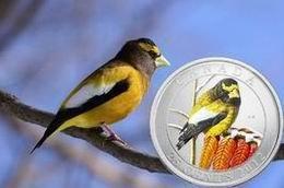 """25 centavos en color para el """"Pájaro de la tarde"""" canadiense"""
