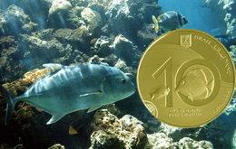 """""""Imágenes de Israel: Arrecife de Coral en Eilat"""" en oro y plata"""