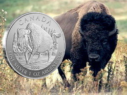 """Serie """"Wildlife"""" finaliza con el sexto bullion de plata dedicado al bisonte de montaña"""