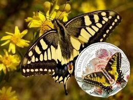 3D a color para la Papilio Machaon de Andorra