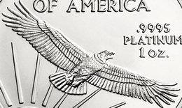 Bullion American Eagle Platinum 2014, cinco años después