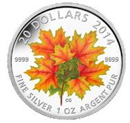 El Maple Leaf del otoño canadiense que brilla en la oscuridad